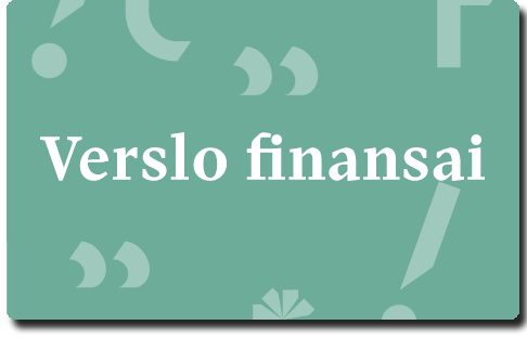 VDU verslo finansai